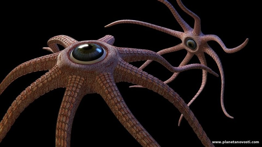 Британский астроном считает, что на спутнике Юпитера живут осьминоги