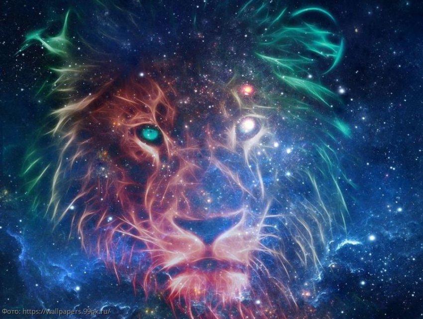Гороскоп подарков: что подарить Львам и Девам