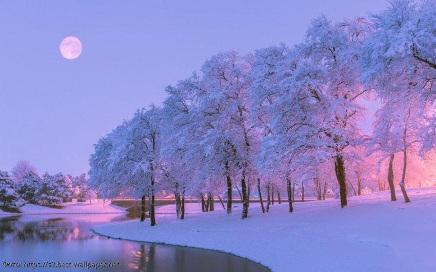 Лунный прогноз красоты и здоровья на 16 февраля