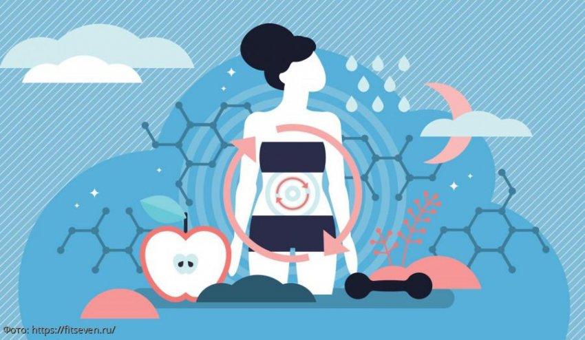 Как сдвинуть метаболизм с мёртвой точки