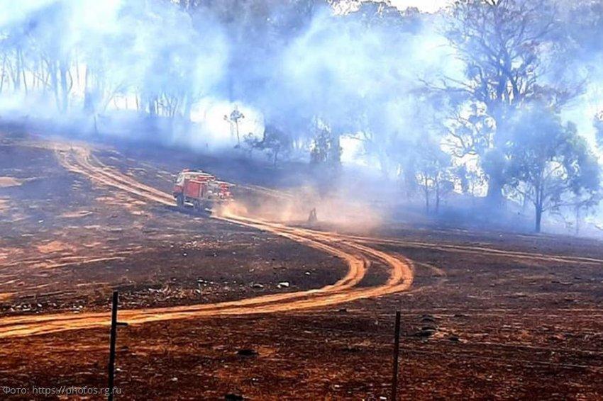 Пожары в Австралии обнажили неизвестные следы древней цивилизации