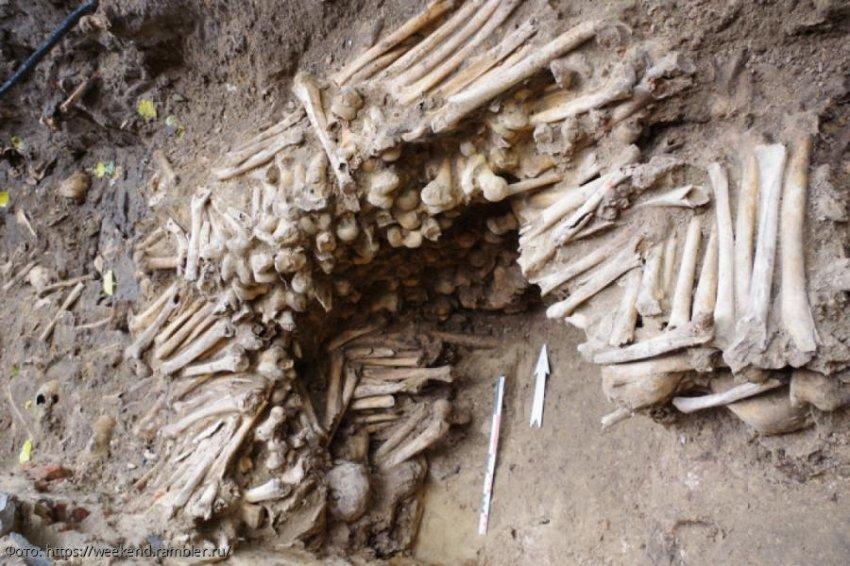 Бельгийские учёные обнаружили стены из человеческих костей