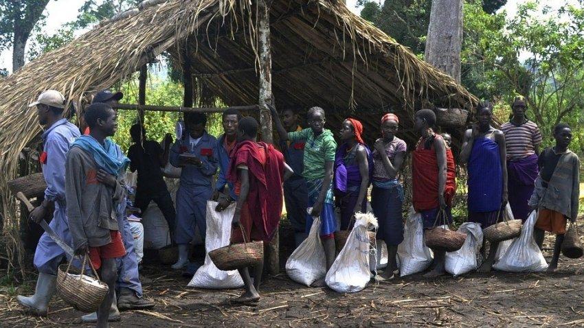 Жители Эфиопии столкнулись с неизвестной смертельной болезнью