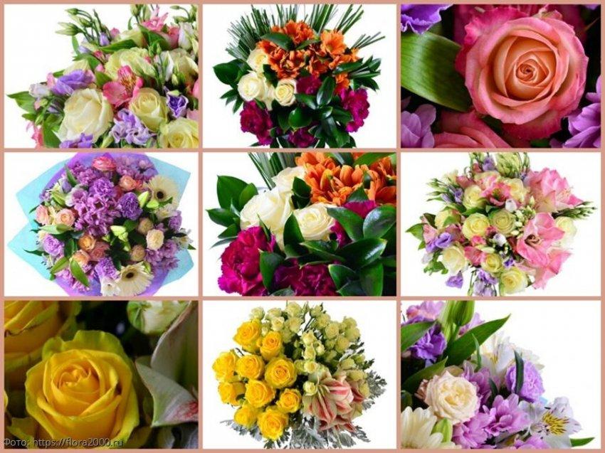 Язык цветов: флористы раскрыли все секреты значения подаренного букета на 8 марта