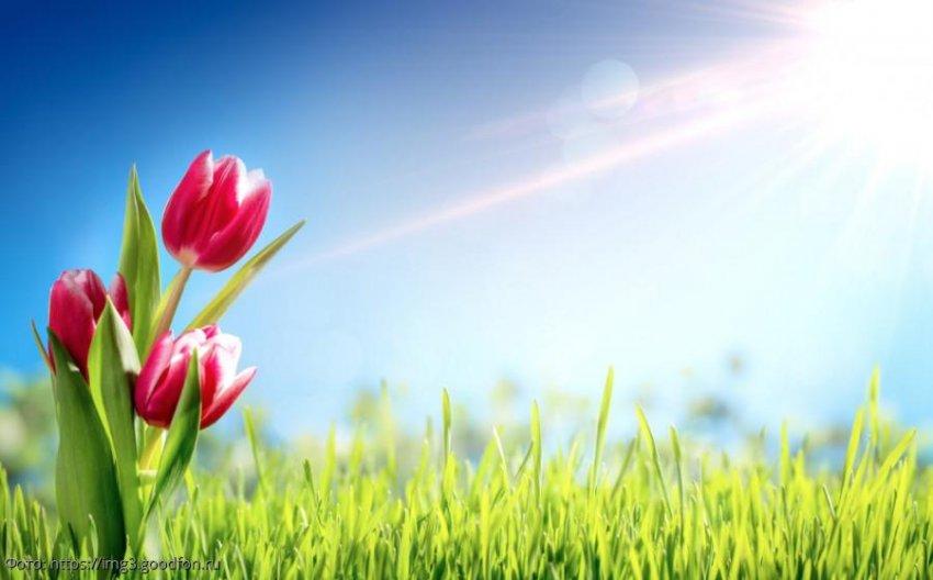 Как удачно встретить весну Ракам, Львам и Девам
