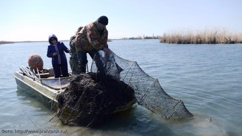 Сотрудники ПУ ФСБ России по Краснодарскому краю установили 2 местных жителей, незаконно добывающих водные биоресурсы