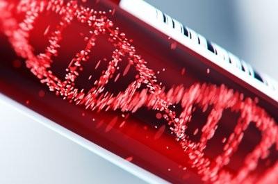 Ученые: коронавирус не был создан человеком