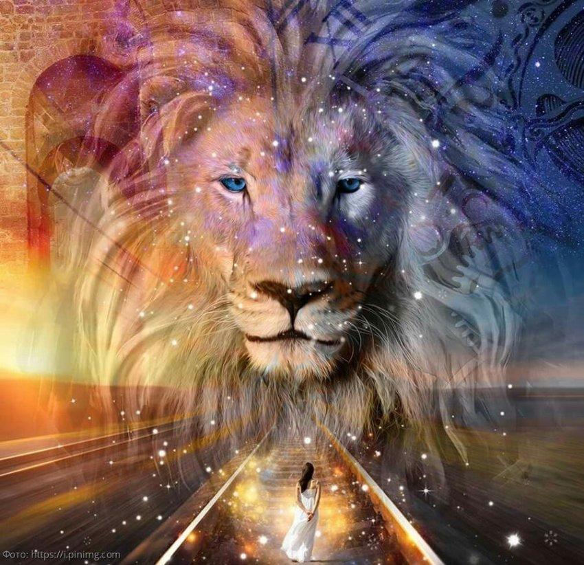 Глоба определил знаки зодиака, кому 26 марта удастся самоутвердиться в жизни