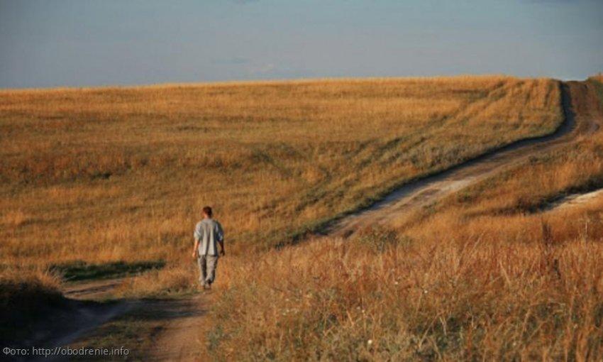 Способы улучшить карму для Раков, Львов и Дев