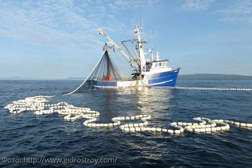 Сотрудники Погрануправления ФСБ России по Краснодарскому краю выявили 2 нарушения правил рыболовства