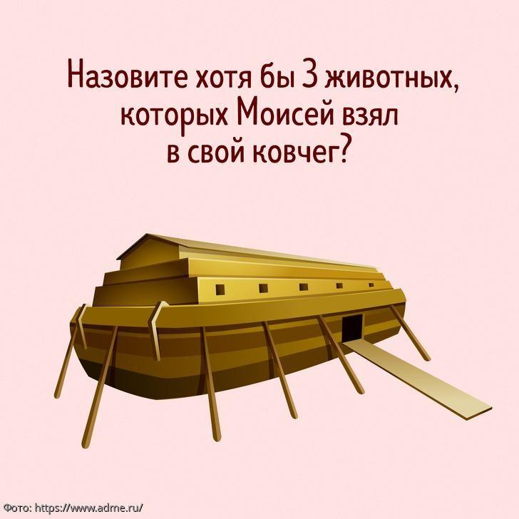Тест на сообразительность: назовите животных, которых Моисей взял с собой в ковчег