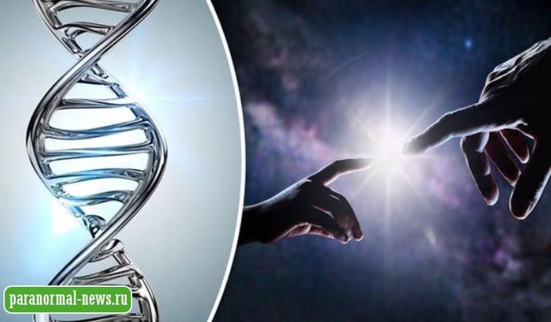Человеческое тело не проходило через эволюцию: Уважаемый хирург усомнился в теории Дарвина