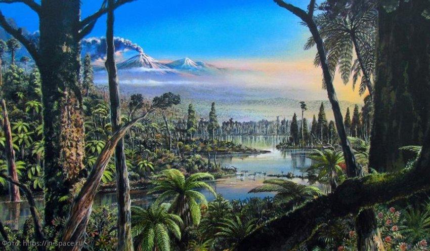 В Антарктиде 90 миллионов лет назад был тропический лес: планета была теплее, чем считает наука