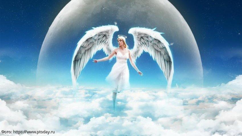 Три знака зодиака, которые в период с 15 по 23 апреля будут находиться под крылом ангела