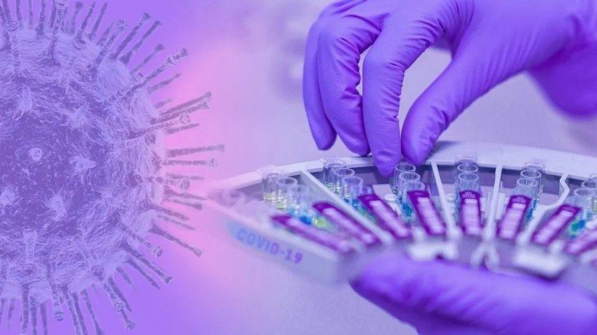 Каждый третий американец считает, что коронавирус был создан в лаборатории