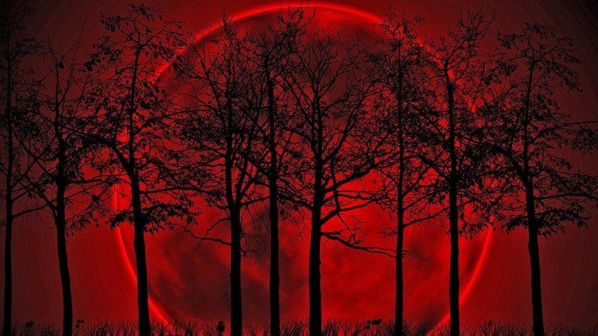 Над Италией неожиданно взошла Кровавая Луна: к чему бы это