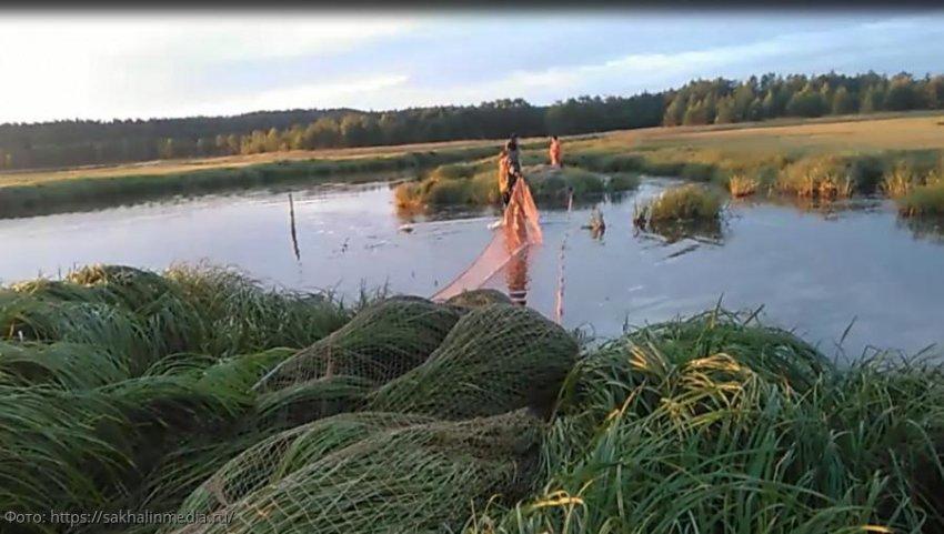 ПУ ФСБ России по Краснодарскому краю выявили граждан, незаконно добывающих водные биоресурсы