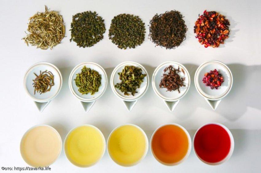 Полезные свойства чая для энергетики и здоровья