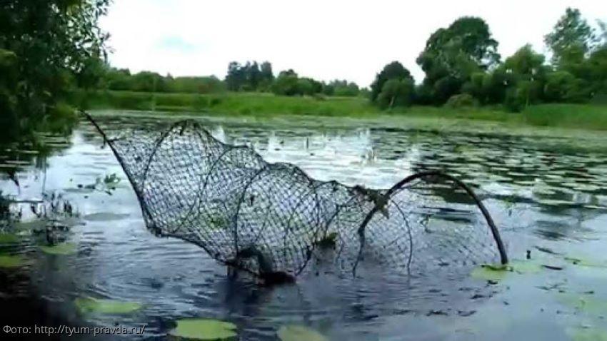 В Темрюкском районе выявлены двое граждан, которые с помощью вентеря добывали водные биоресурсы