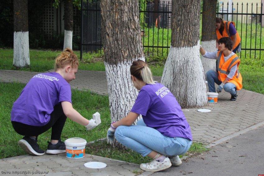 Волонтеры коронавируса – не просто источник бесплатной рабочей силы