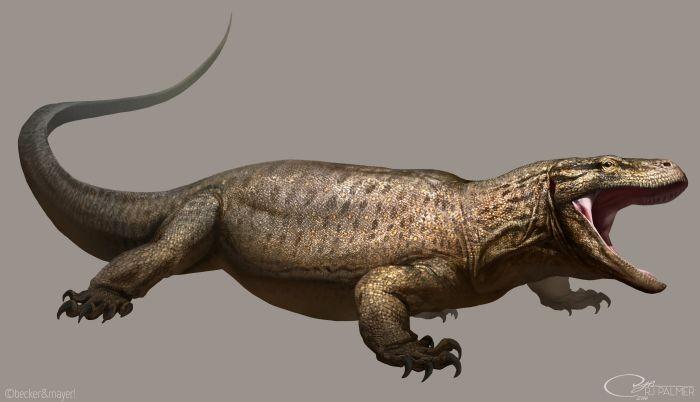 Гигантские ящерицы-людоеды живут в дебрях Австралии? - Паранормальные новости