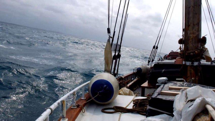 Уловка-22: новая технология поможет решить экологические проблемы рыболовства, но рискует заменить одну проблему на другую