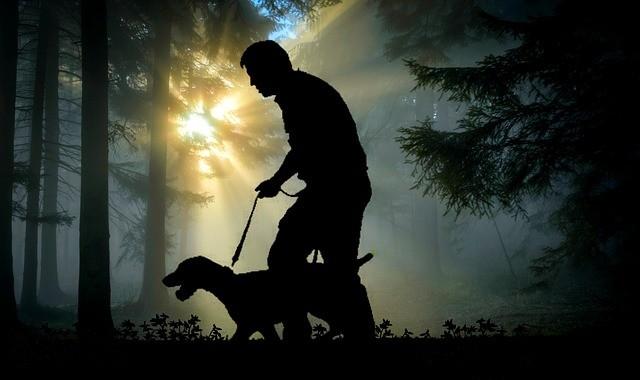 Глюк в Матрице во время прогулки с собакой - Паранормальные новости