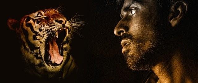 Откровения мужчины, который считает себя тигром-оборотнем - Паранормальные новости