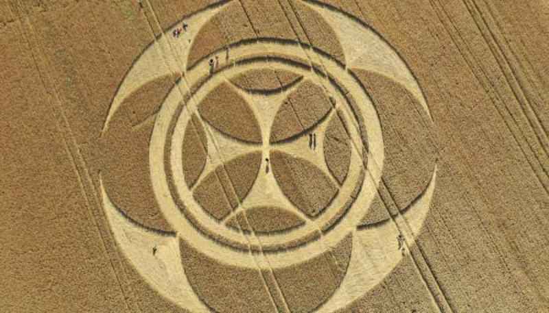 Фермеры во Франции в шоке: на их поле появился рисунок в виде «Креста Тамплиеров»