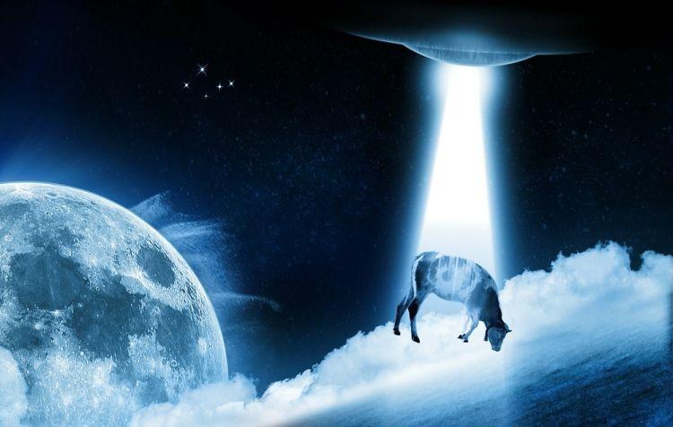 Как НЛО похитил и убил ...оленя - Паранормальные новости