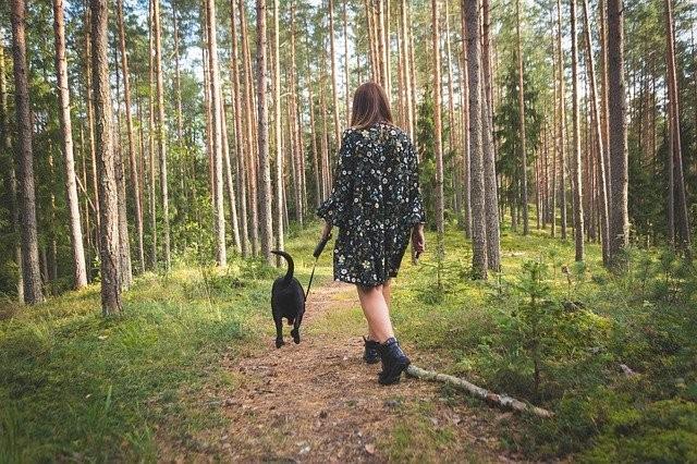 «В моем лесу живет что-то большое и страшное» - Паранормальные новости