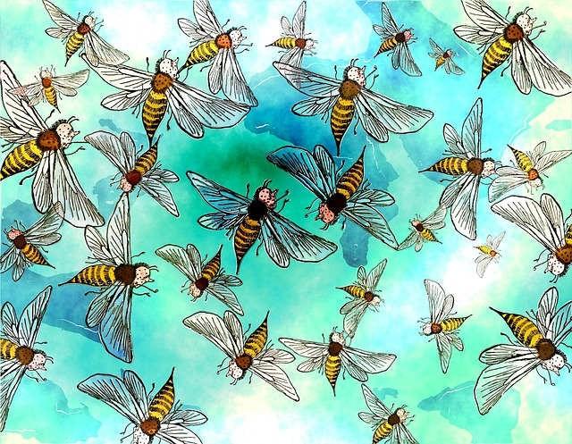 Огромный рой насекомых, странное существо и необычные тени в доме - Паранормальные новости