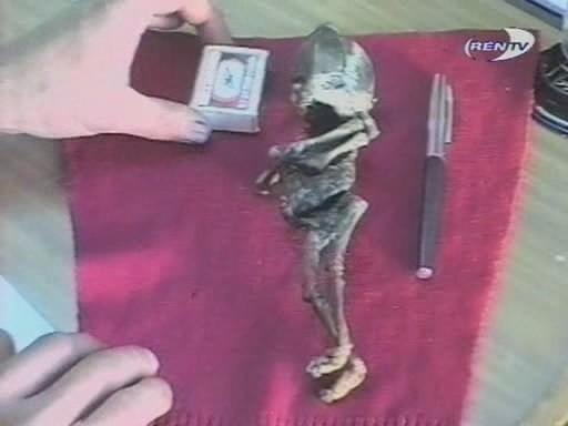 Младенец-мутант или реально что-то внеземное: Кем же был «Пришелец Алёшенька»? - Паранормальные новости