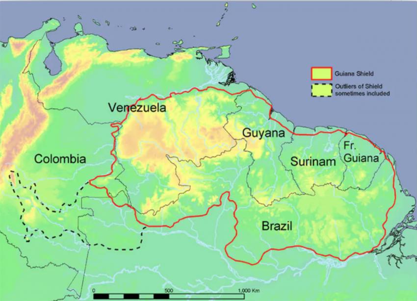 Новое исследование: золотодобыча на протяжении многих лет оставляет бесплодными леса Амазонии