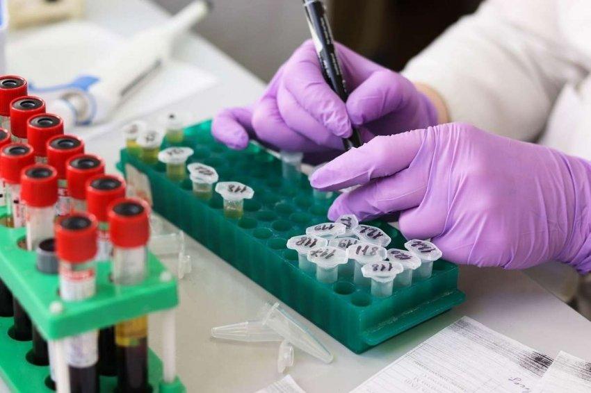 Коктейль с антителами для профилактики и лечения COVID-19 вступает в позднюю стадию испытаний