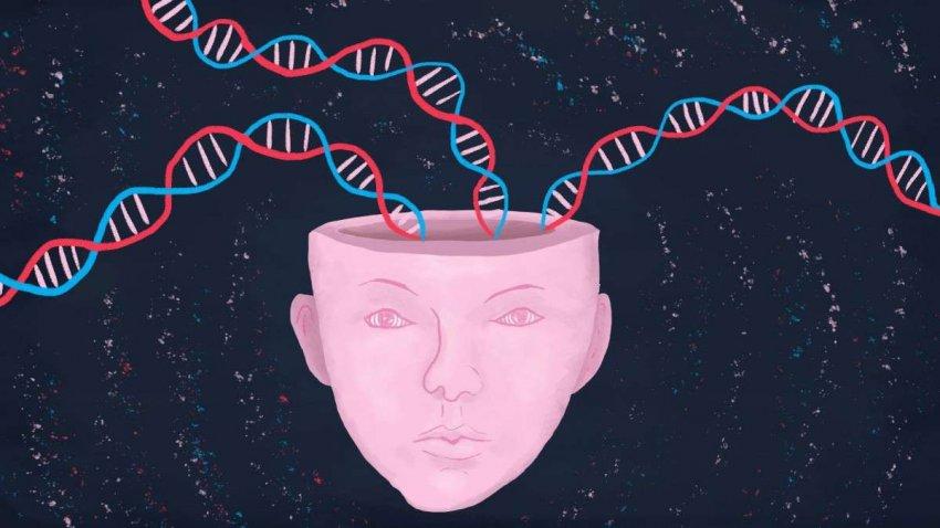 Болезнь Альцгеймера: обнаружен защитный ген, обещающий новые открытия лекарств