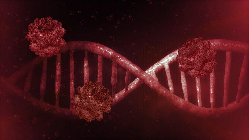 Житель США снова заболел коронавирусом через 10 дней после выздоровления
