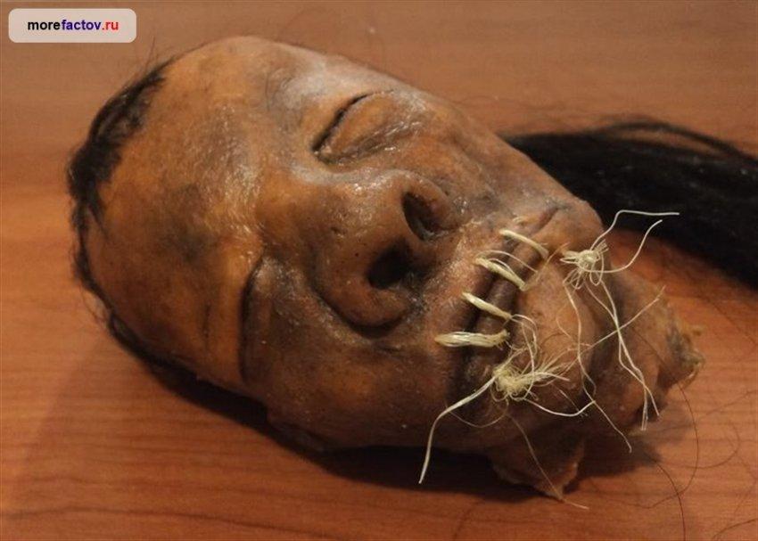 Как создавались Тсантса - высушенные человеческие головы?