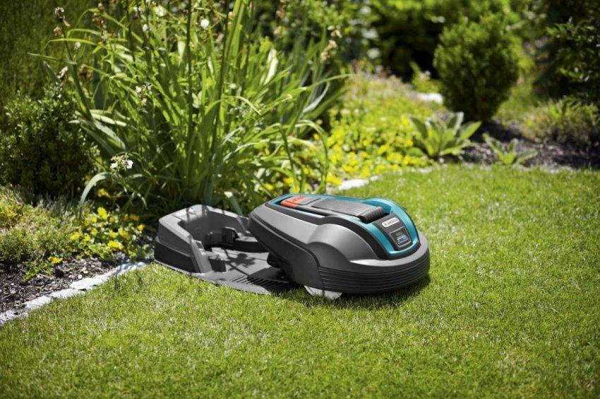 Рейтинг лучших газонокосилок роботов