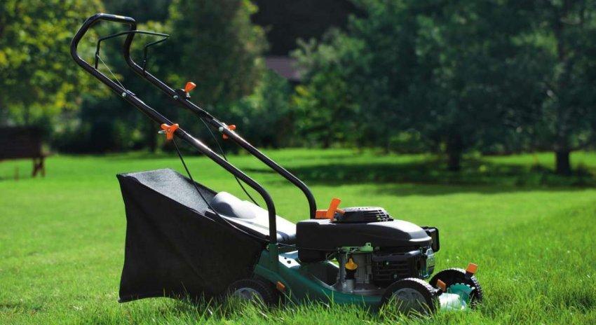 Обзор лучших электрических газонокосилок для высокой травы