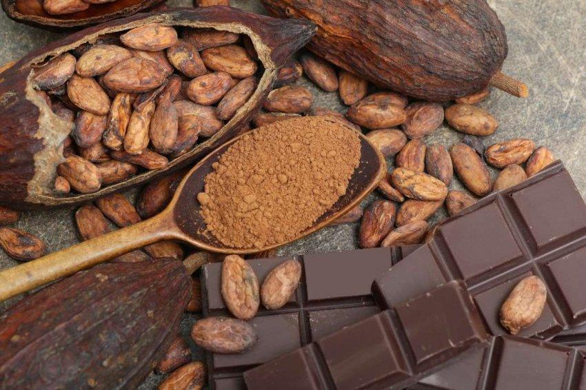 Краткая история шоколада и некоторые из его удивительных преимуществ для здоровья