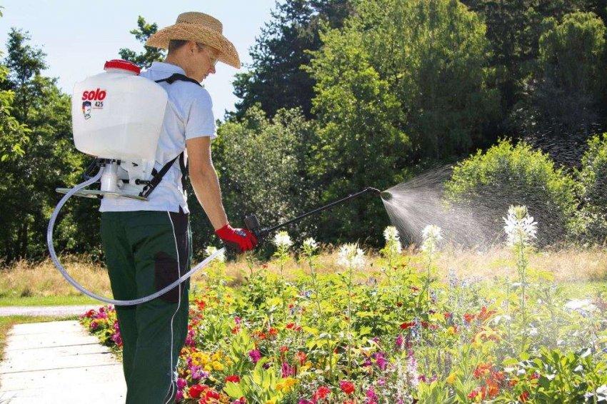 Рейтинг лучших бензиновых опрыскивателей для сада
