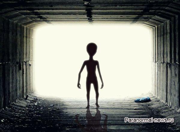 Житель Чикаго увидел в аэропорту маленького инопланетянина с руками до колен