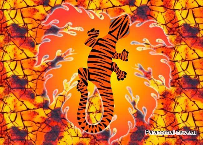 Огненные саламандры: мистические духи огня