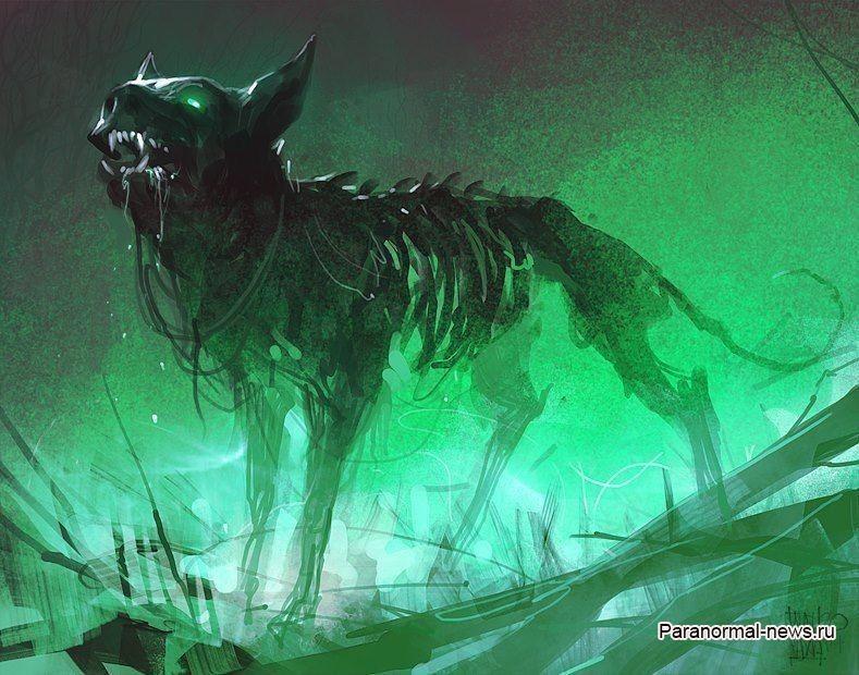 Таинственные «Адские собаки» из каньона Эльдорадо