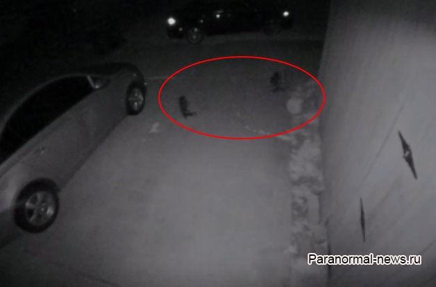 Странные маленькие существа попали на камеру видеонаблюдения