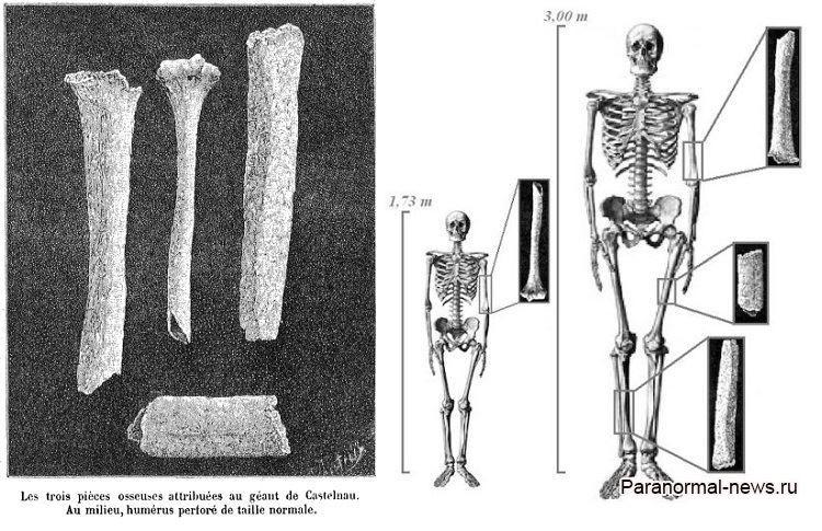 Загадка гигантских человеческих костей из Франции, о которых внезапно забыли
