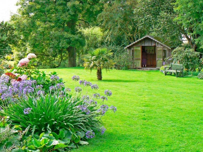 ТОП 10 профессиональных газонокосилок