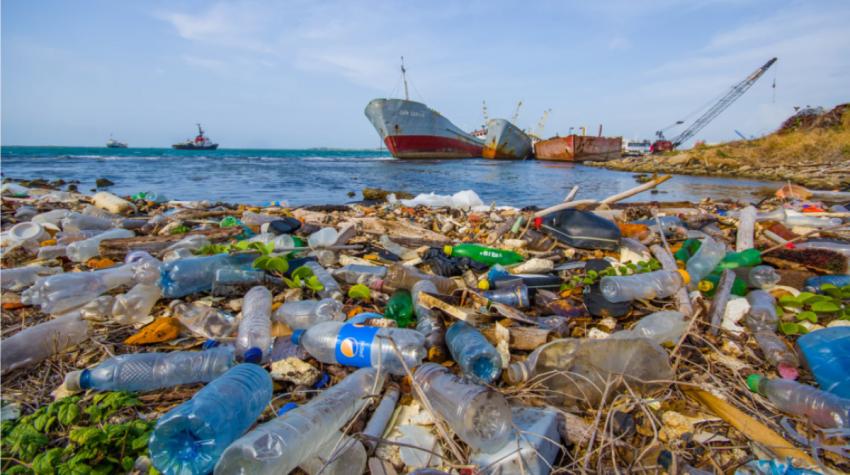 Океан «утонул» в пластике, и с каждым днем становится все хуже