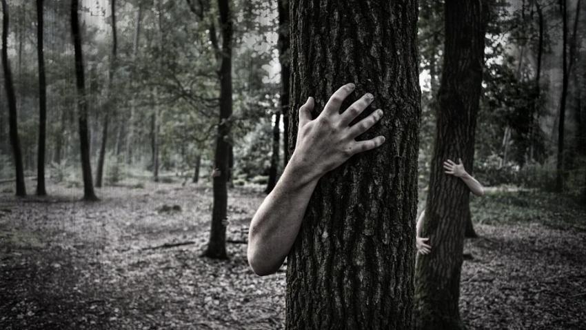 Как избавиться от ночных кошмаров: названы пять простых способов
